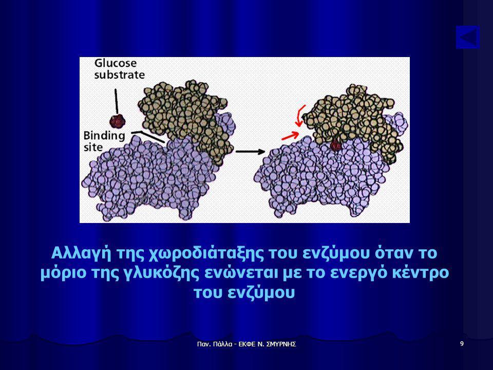 Παν. Πάλλα - ΕΚΦΕ Ν. ΣΜΥΡΝΗΣ 9 Αλλαγή της χωροδιάταξης του ενζύμου όταν το μόριο της γλυκόζης ενώνεται με το ενεργό κέντρο του ενζύμου