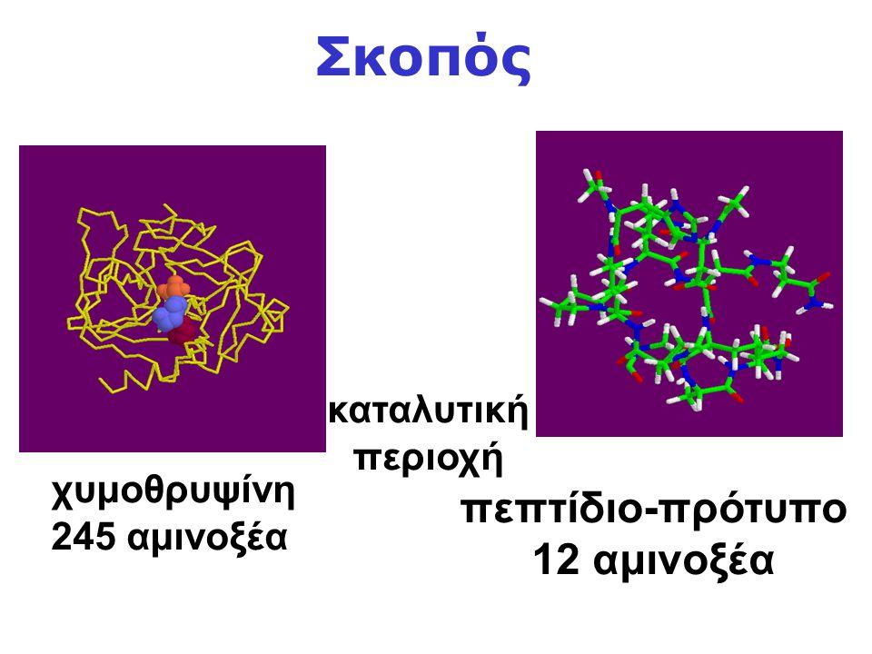 καταλυτική περιοχή χυμοθρυψίνη 245 αμινοξέα πεπτίδιο-πρότυπο 12 αμινοξέα Σκοπός