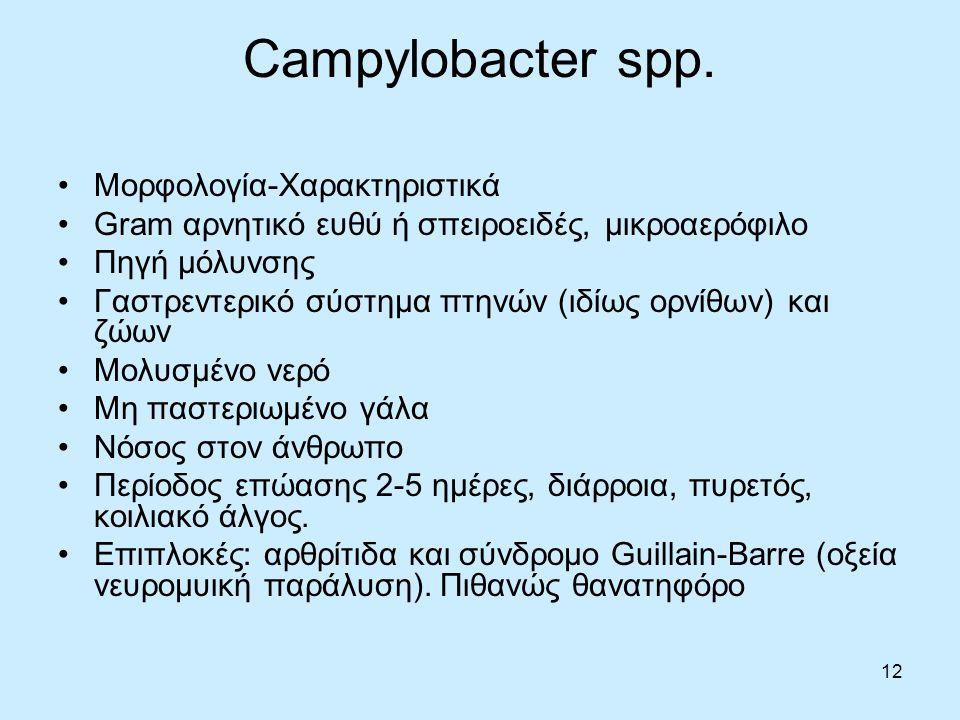 12 Campylobacter spp. Μορφολογία-Χαρακτηριστικά Gram αρνητικό ευθύ ή σπειροειδές, μικροαερόφιλο Πηγή μόλυνσης Γαστρεντερικό σύστημα πτηνών (ιδίως ορνί
