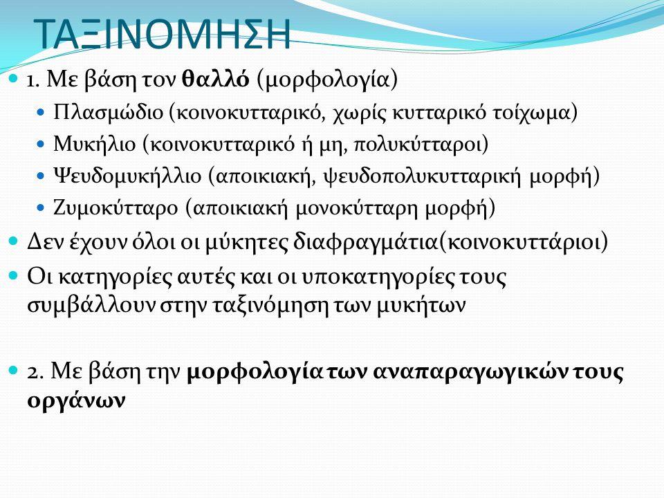 ΤΑΞΙΝΟΜΗΣΗ 1.