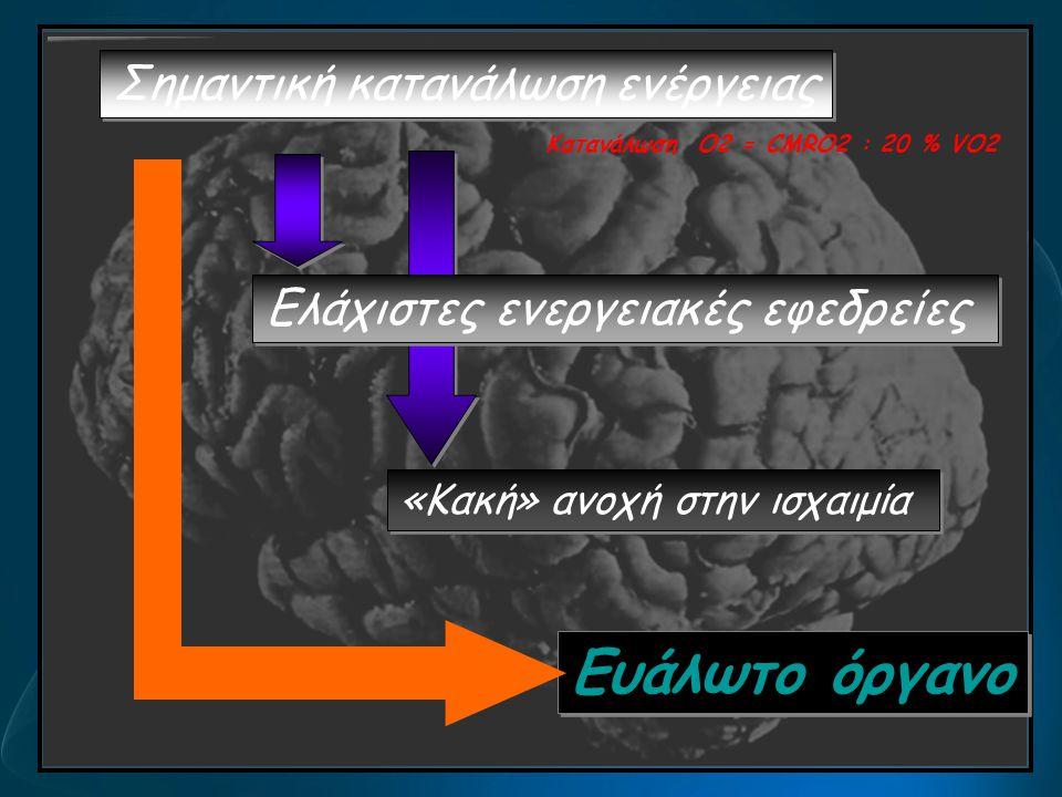 Σημαντική κατανάλωση ενέργειας Ευάλωτο όργανο Ελάχιστες ενεργειακές εφεδρείες «Κακή» ανοχή στην ισχαιμία Κατανάλωση O2 = CMRO2 : 20 % VO2