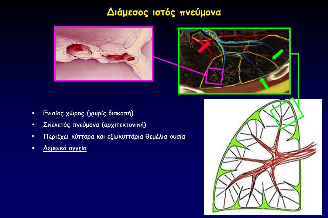 Διάμεσος ιστός πνεύμονα κυψελίδ α  Ενιαίος χώρος (χωρίς διακοπή)  Σκελετός πνεύμονα (αρχιτεκτονική)  Περιέχει  Περιέχει κύτταρα και εξωκυττάρια θε