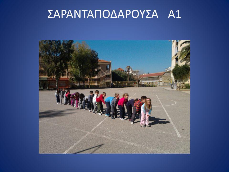 ΣΑΡΑΝΤΑΠΟΔΑΡΟΥΣΑ Α1