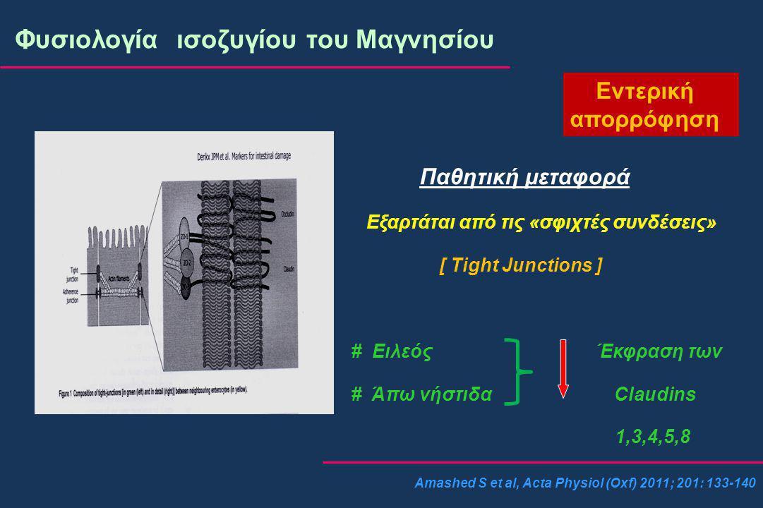 Amashed S et al, Acta Physiol (Oxf) 2011; 201: 133-140 Φυσιολογία ισοζυγίου του Μαγνησίου Εντερική απορρόφηση Παθητική μεταφορά Εξαρτάται από τις «σφιχτές συνδέσεις» [ Tight Junctions ] # Ειλεός Έκφραση των # Άπω νήστιδα Claudins 1,3,4,5,8