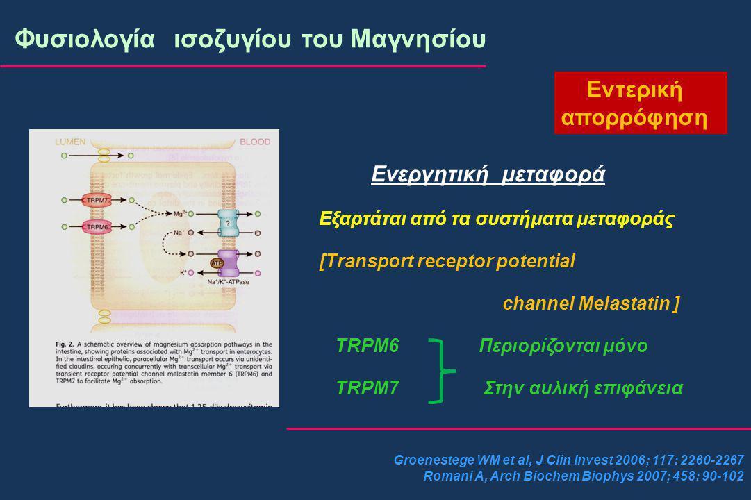 Groenestege WM et al, J Clin Invest 2006; 117: 2260-2267 Romani A, Arch Biochem Biophys 2007; 458: 90-102 Φυσιολογία ισοζυγίου του Μαγνησίου Εντερική απορρόφηση Ενεργητική μεταφορά Εξαρτάται από τα συστήματα μεταφοράς [Transport receptor potential channel Melastatin ] TRPM6 Περιορίζονται μόνο TRPM7 Στην αυλική επιφάνεια