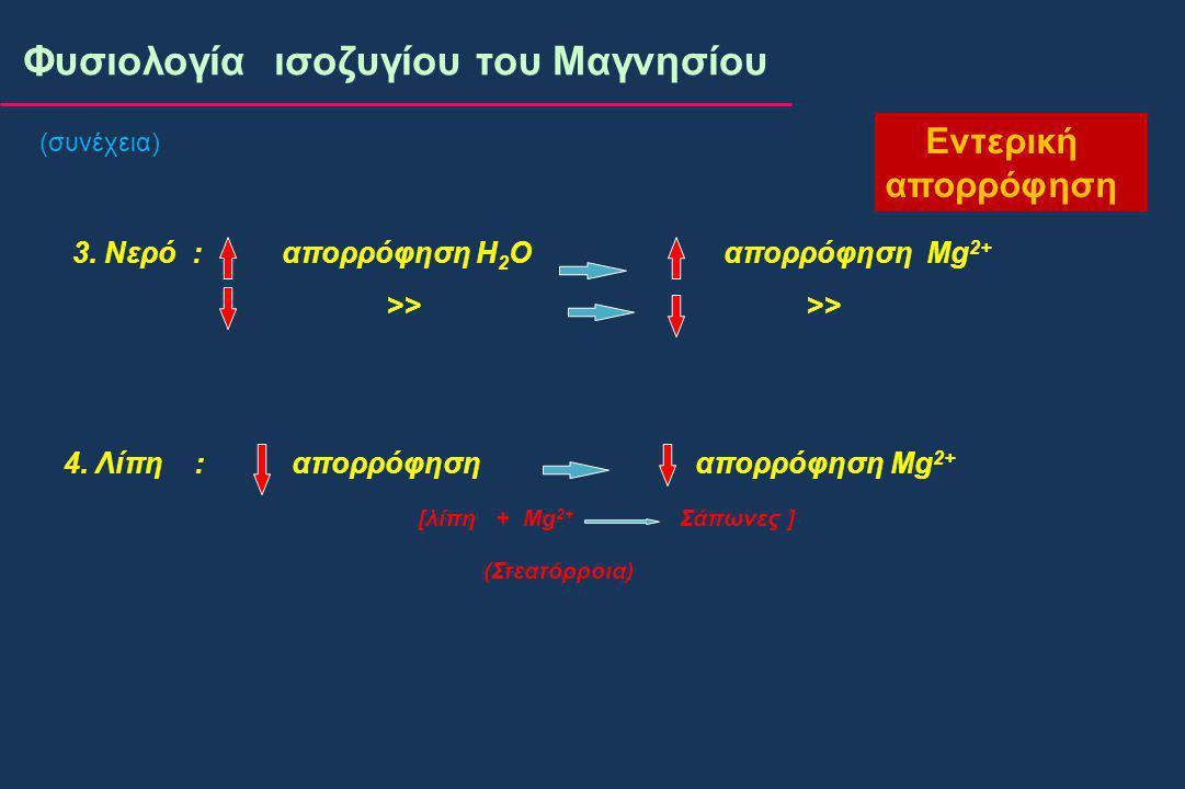 (συνέχεια) Φυσιολογία ισοζυγίου του Μαγνησίου Εντερική απορρόφηση 3.