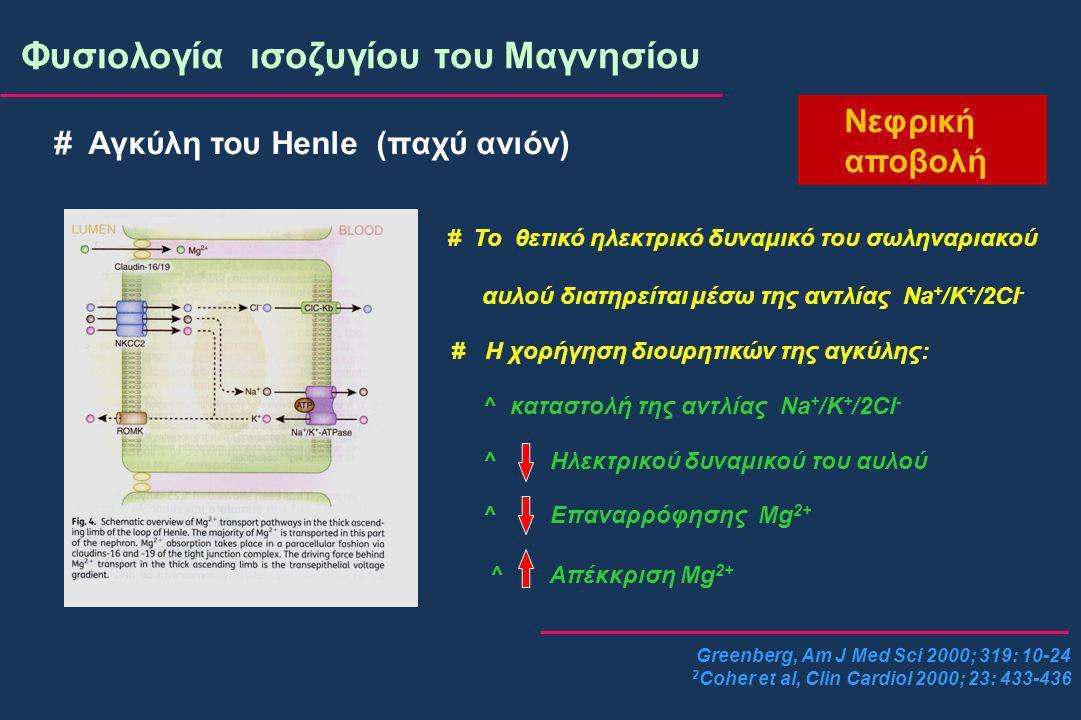 Greenberg, Am J Med Sci 2000; 319: 10-24 2 Coher et al, Clin Cardiol 2000; 23: 433-436 Φυσιολογία ισοζυγίου του Μαγνησίου Νεφρική αποβολή # Αγκύλη του Henle (παχύ ανιόν) # Το θετικό ηλεκτρικό δυναμικό του σωληναριακού αυλού διατηρείται μέσω της αντλίας Na + /K + /2Cl - # Η χορήγηση διουρητικών της αγκύλης: ^ καταστολή της αντλίας Na + /K + /2Cl - ^ Ηλεκτρικού δυναμικού του αυλού ^ Επαναρρόφησης Mg 2+ ^ Απέκκριση Mg 2+