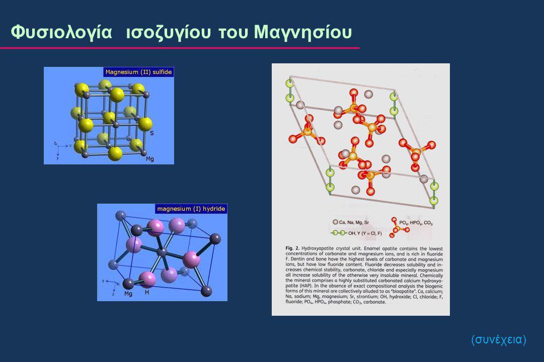 Φυσιολογία ισοζυγίου του Μαγνησίου ^ Ατομικός αριθμός : 12 ^ Ατομικό βάρος : 24 ^ Σθένος : 2 Ca 2+ μοιράζονται τις ιδιότητες ως τα Mg 2+ κυριότερα δισθενή ιόντα.