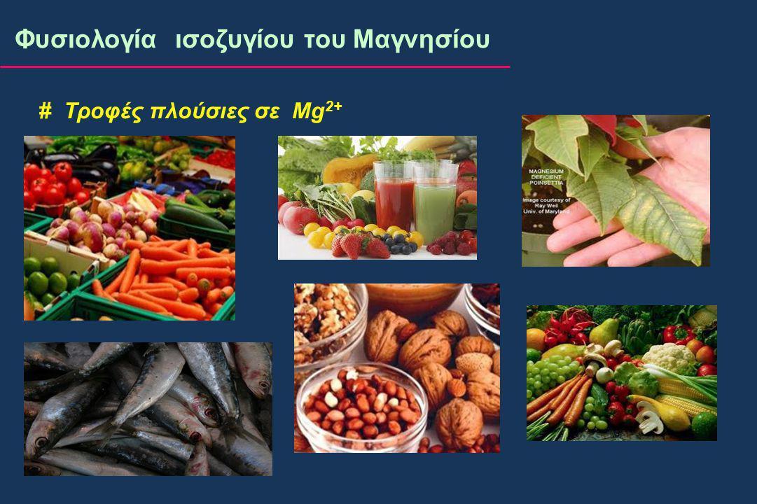 # Τροφές πλούσιες σε Mg 2+