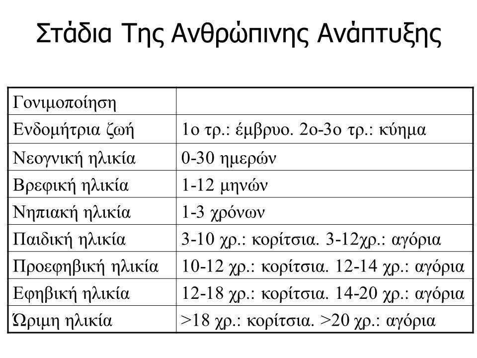 Στάδια Της Ανθρώπινης Ανάπτυξης Γονιμοποίηση Ενδομήτρια ζωή1ο τρ.: έμβρυο. 2ο-3ο τρ.: κύημα Νεογνική ηλικία0-30 ημερών Βρεφική ηλικία1-12 μηνών Νηπιακ