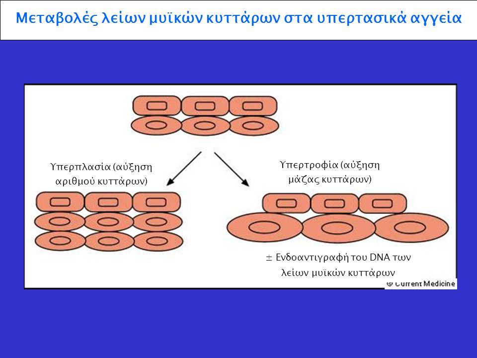 Πίεση Αύξηση της μάζας του τοιχώματος Αναδιαμόρφωση χωρίς μεταβολή της μάζας του τοιχώματος Μηχανικοί παράγοντες που οδηγούν σε μείωση της διαμέτρου του αυλού