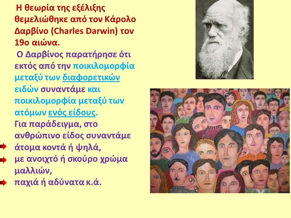 Η θεωρία της εξέλιξης θεμελιώθηκε από τον Κάρολο Δαρβίνο (Charles Darwin) τον 19ο αιώνα. Ο Δαρβίνος παρατήρησε ότι εκτός από την ποικιλομορφία μεταξύ