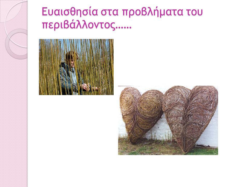 Ευαισθησία στα προβλήματα του περιβάλλοντος……