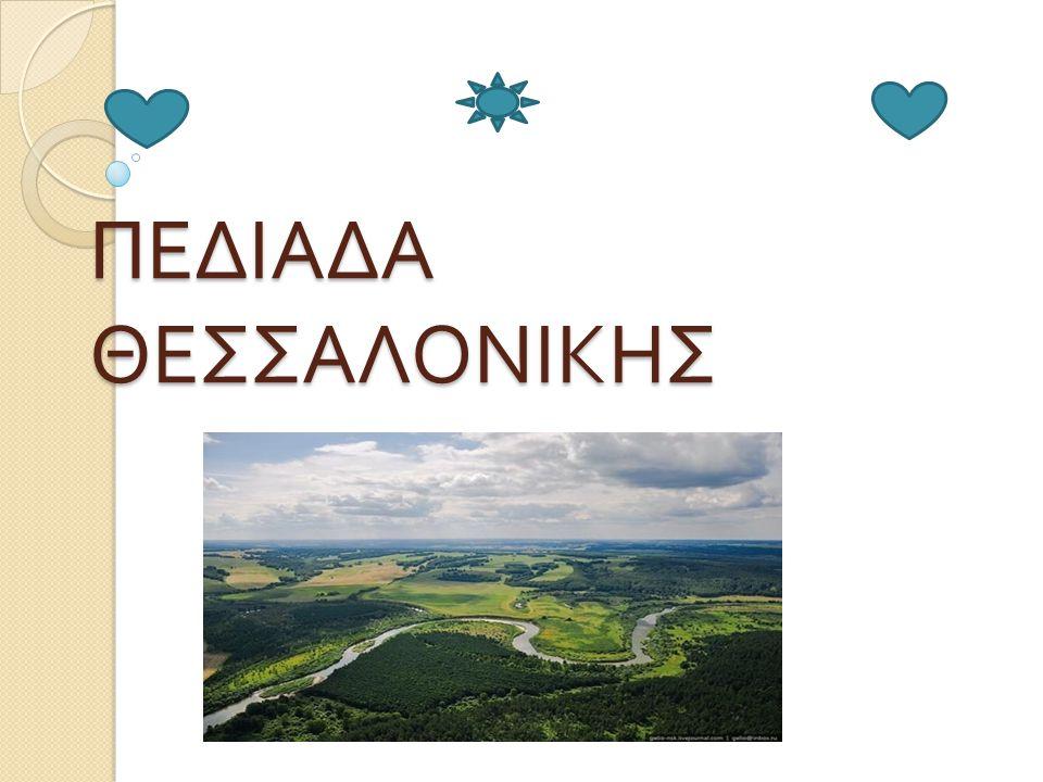 ΠΕΔΙΑΔΑ ΘΕΣΣΑΛΟΝΙΚΗΣ ( πληροφορίες ) T ην περίοδο της όψιμης ρωμαιοκρατίας πλέον σχηματίζεται η λίμνη του Λουδία η αλλιώς λίμνη Γιαννιτσών.