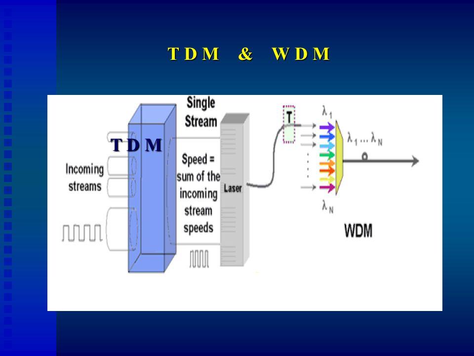 T D M & W D M T D M