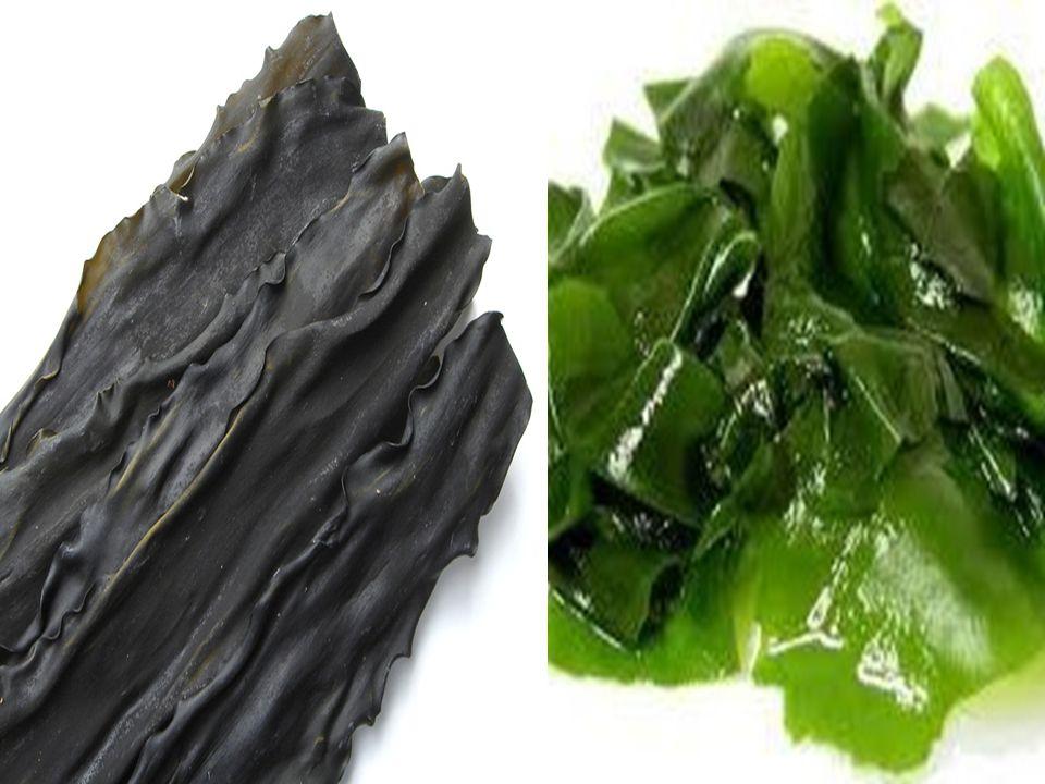 Κombu: πηγή ασβεστίου, σιδήρου, μαγνησίου και πολυσακχαριτών. Διαθέτει την πιο ξεχωριστή γεύση και ενδείκνυται για την παρασκευή ζωμών και ριζότων, κα