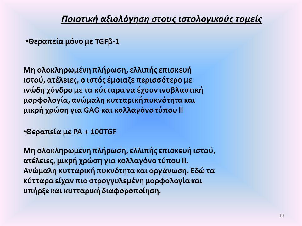 Ποιοτική αξιολόγηση στους ιστολογικούς τομείς Θεραπεία μόνο με TGFβ-1 Μη ολοκληρωμένη πλήρωση, ελλιπής επισκευή ιστού, ατέλειες, ο ιστός έμοιαζε περισ