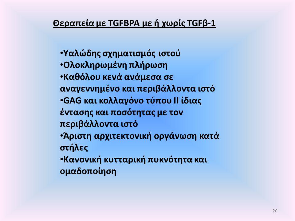 Θεραπεία με TGFBPA με ή χωρίς TGFβ-1 Υαλώδης σχηματισμός ιστού Ολοκληρωμένη πλήρωση Καθόλου κενά ανάμεσα σε αναγεννημένο και περιβάλλοντα ιστό GAG και