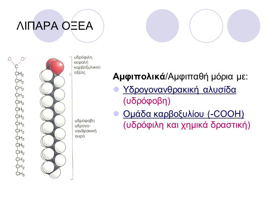 ΛΙΠΑΡΑ ΟΞΕΑ Αμφιπολικά/Αμφιπαθή μόρια με: Υδρογονανθρακική αλυσίδα (υδρόφοβη) Ομάδα καρβοξυλίου (-COOH) (υδρόφιλη και χημικά δραστική)