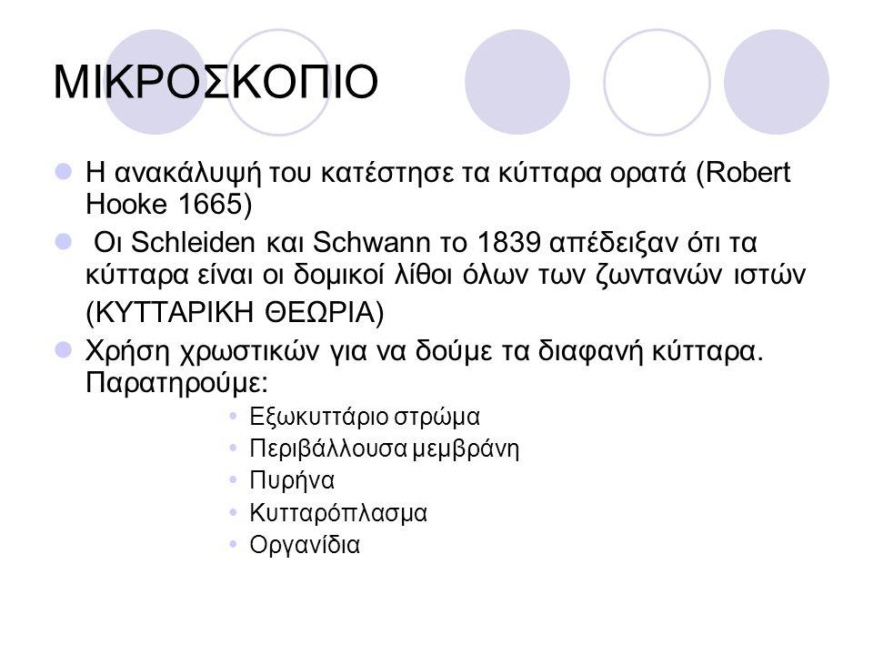 ΜΙΚΡΟΣΚΟΠΙΟ Η ανακάλυψή του κατέστησε τα κύτταρα ορατά (Robert Hooke 1665) Οι Schleiden και Schwann το 1839 απέδειξαν ότι τα κύτταρα είναι οι δομικοί