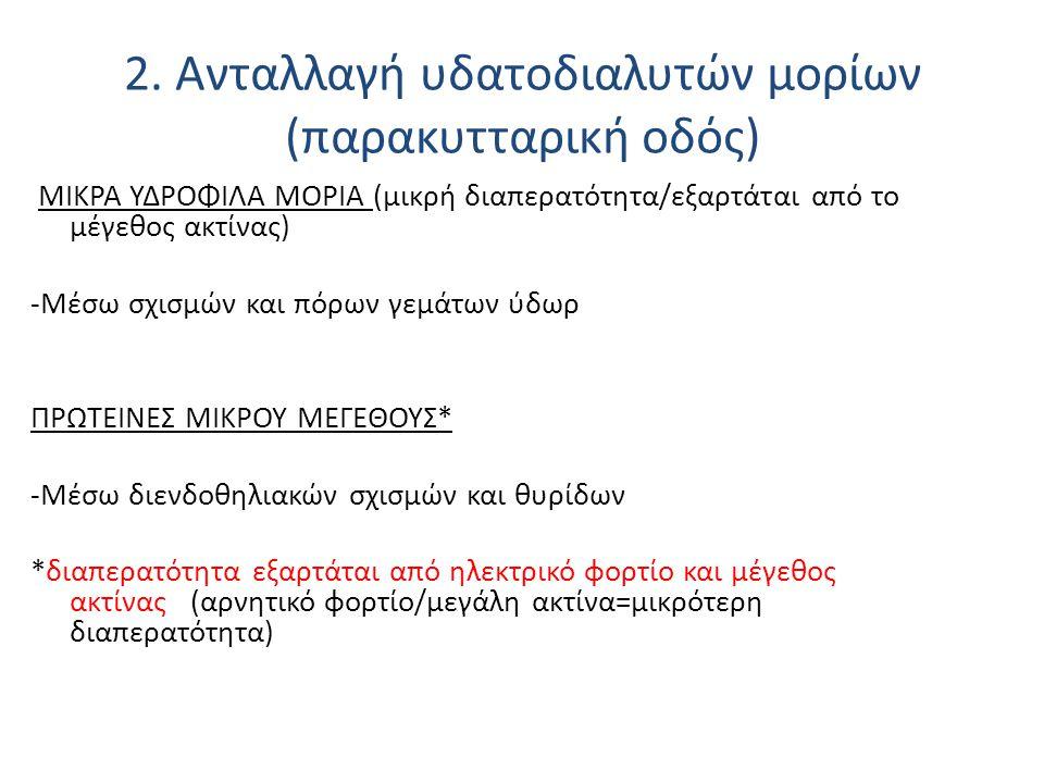 MΙΚΡΑ ΥΔΡΟΦΙΛΑ ΜΟΡΙΑ (μικρή διαπερατότητα/εξαρτάται από το μέγεθος ακτίνας) -Μέσω σχισμών και πόρων γεμάτων ύδωρ ΠΡΩΤΕΙΝΕΣ ΜΙΚΡΟΥ ΜΕΓΕΘΟΥΣ* -Μέσω διεν