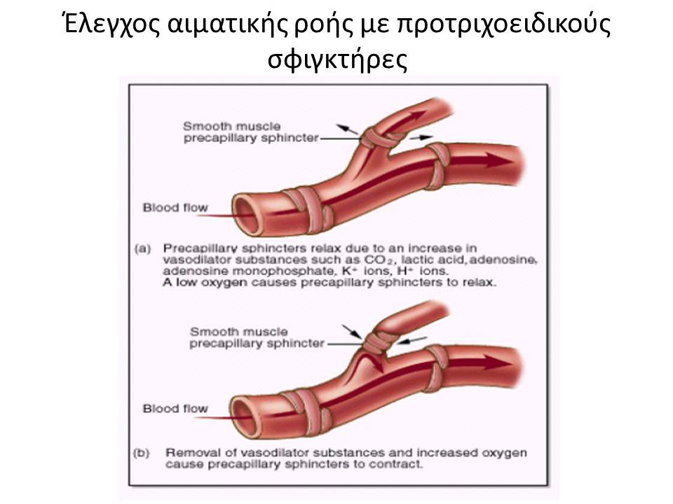 Έλεγχος αιματικής ροής με προτριχοειδικούς σφιγκτήρες