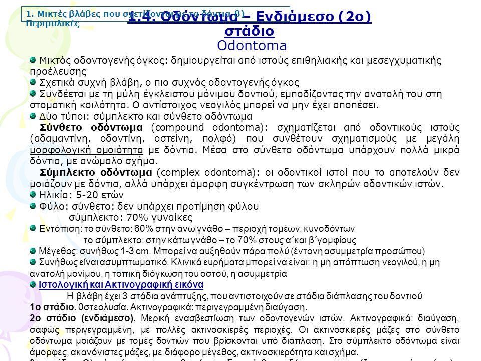 1.4.Οδόντωμα – Ενδιάμεσο (2ο) στάδιο Odontoma 1.