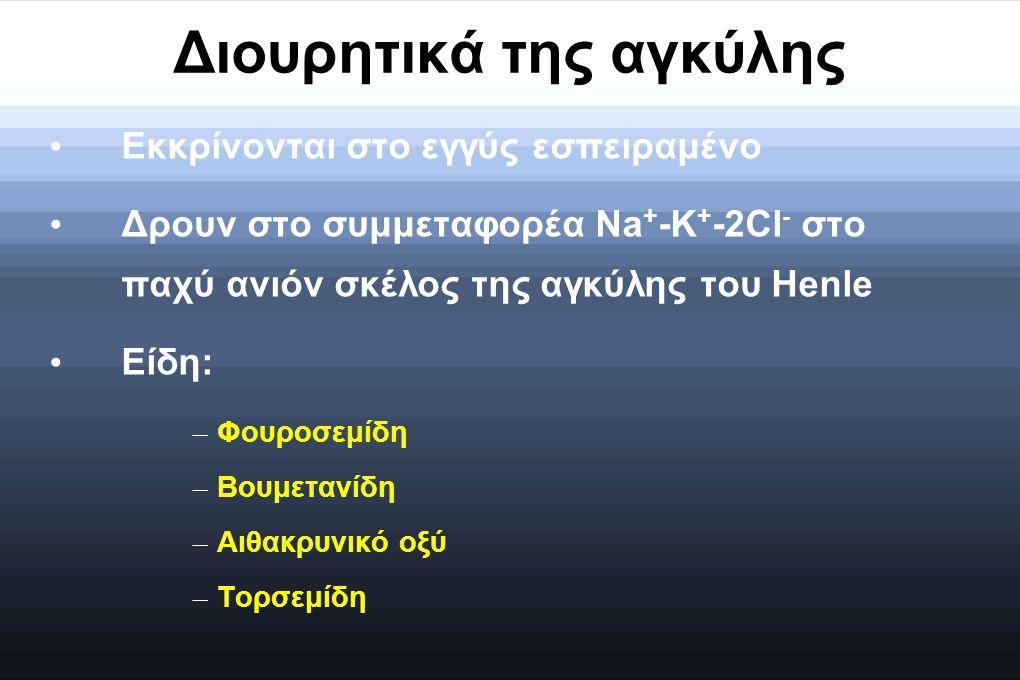 Διουρητικά της αγκύλης Εκκρίνονται στο εγγύς εσπειραμένο Δρουν στο συμμεταφορέα Na + -K + -2Cl - στο παχύ ανιόν σκέλος της αγκύλης του Henle Είδη: – Φ