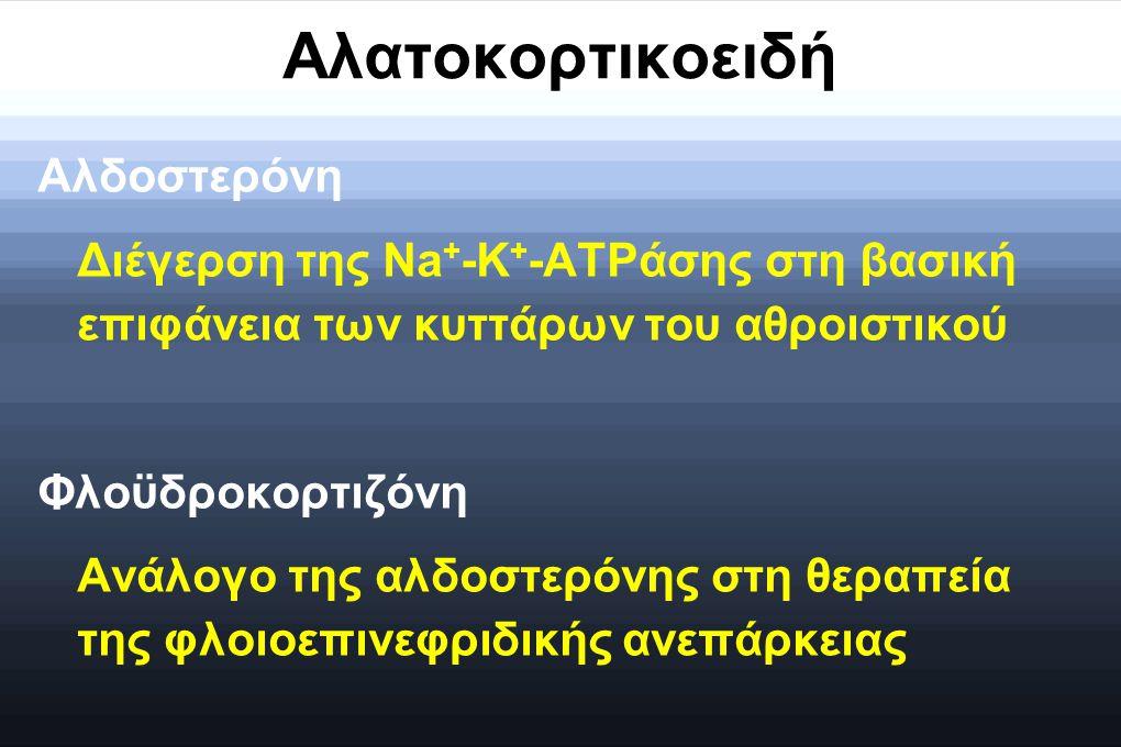 Αλατοκορτικοειδή Αλδοστερόνη Διέγερση της Na + -K + -ATPάσης στη βασική επιφάνεια των κυττάρων του αθροιστικού Φλοϋδροκορτιζόνη Ανάλογο της αλδοστερόν