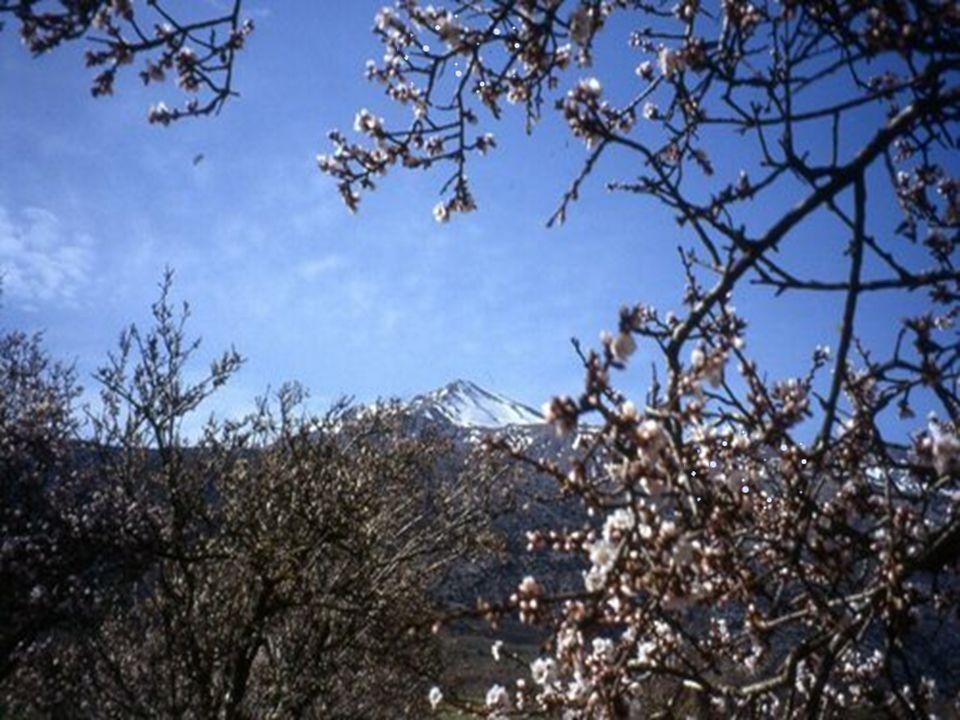 Λασίθι - Εco Park Lasinthos