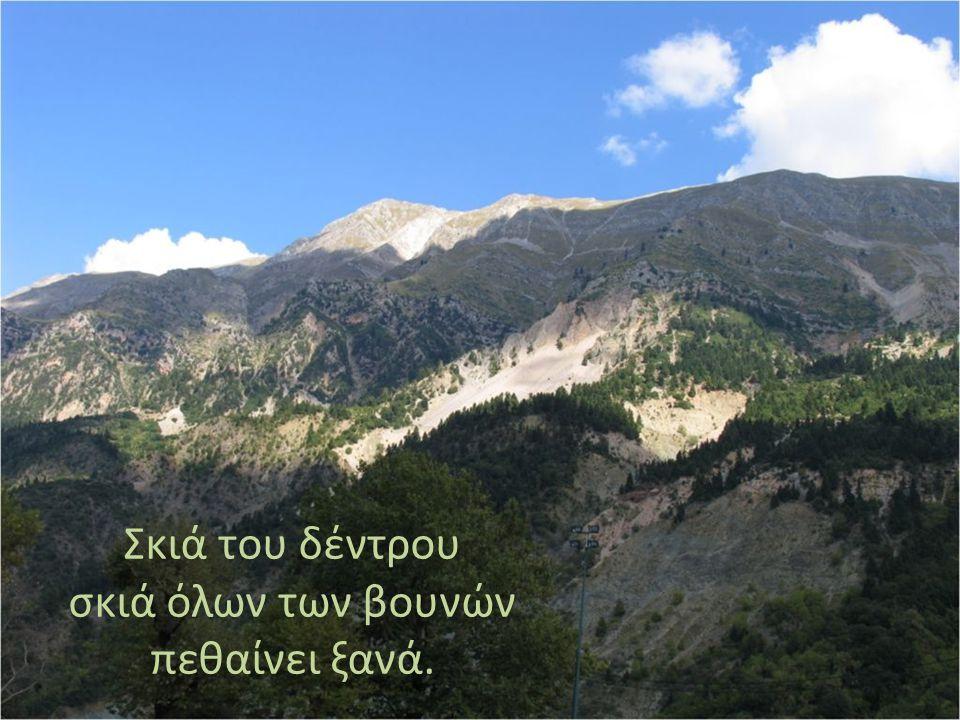 Σκιά του δέντρου σκιά όλων των βουνών πεθαίνει ξανά.