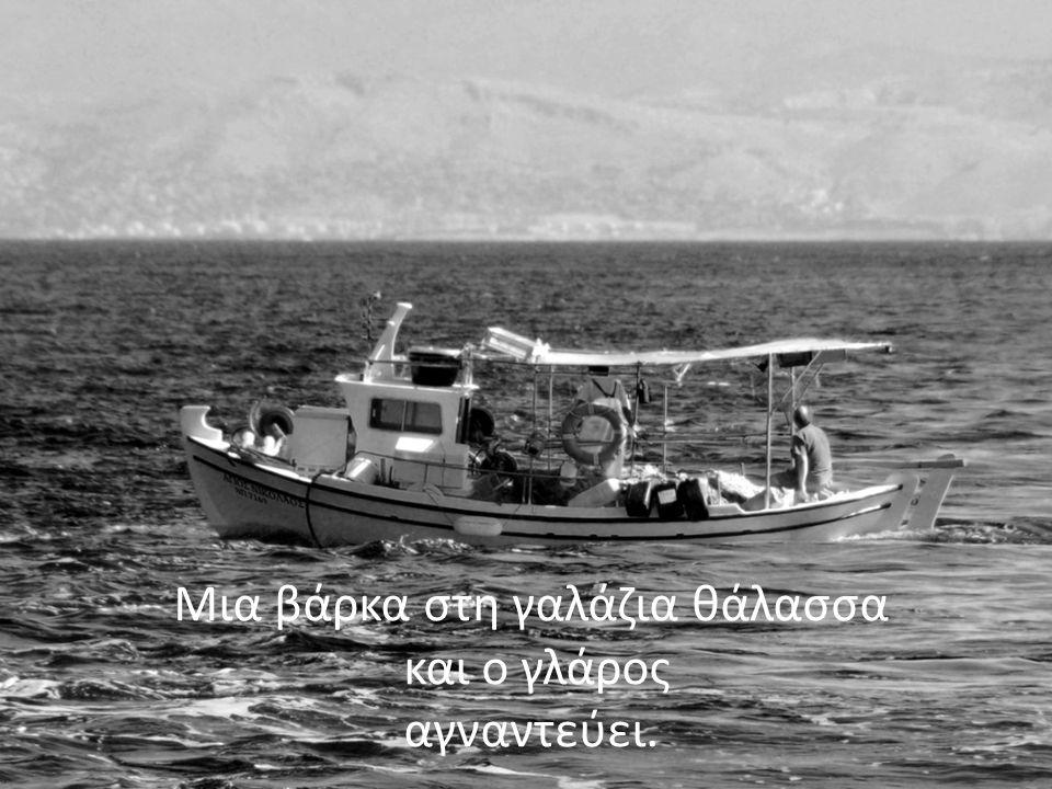 Μια βάρκα στη γαλάζια θάλασσα και ο γλάρος αγναντεύει.