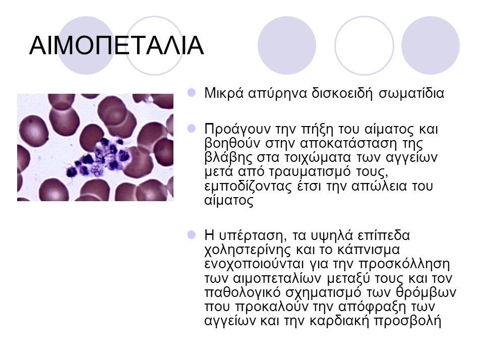 ΑΙΜΟΠΕΤΑΛΙΑ Μικρά απύρηνα δισκοειδή σωματίδια Προάγουν την πήξη του αίματος και βοηθούν στην αποκατάσταση της βλάβης στα τοιχώματα των αγγείων μετά απ