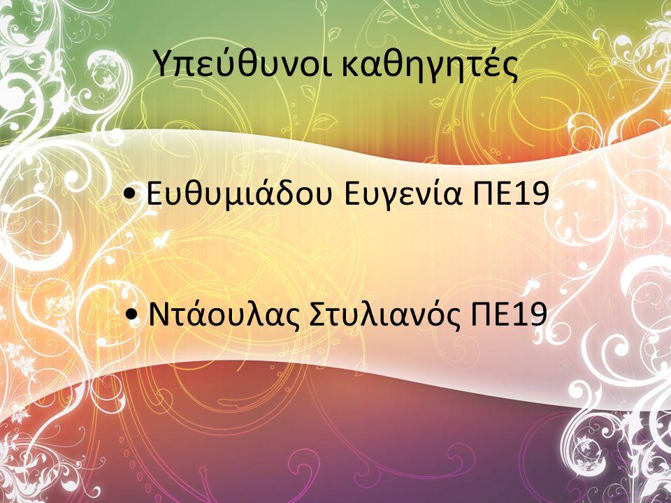 Υπεύθυνοι καθηγητές Ευθυμιάδου Ευγενία ΠΕ19 Ντάουλας Στυλιανός ΠΕ19