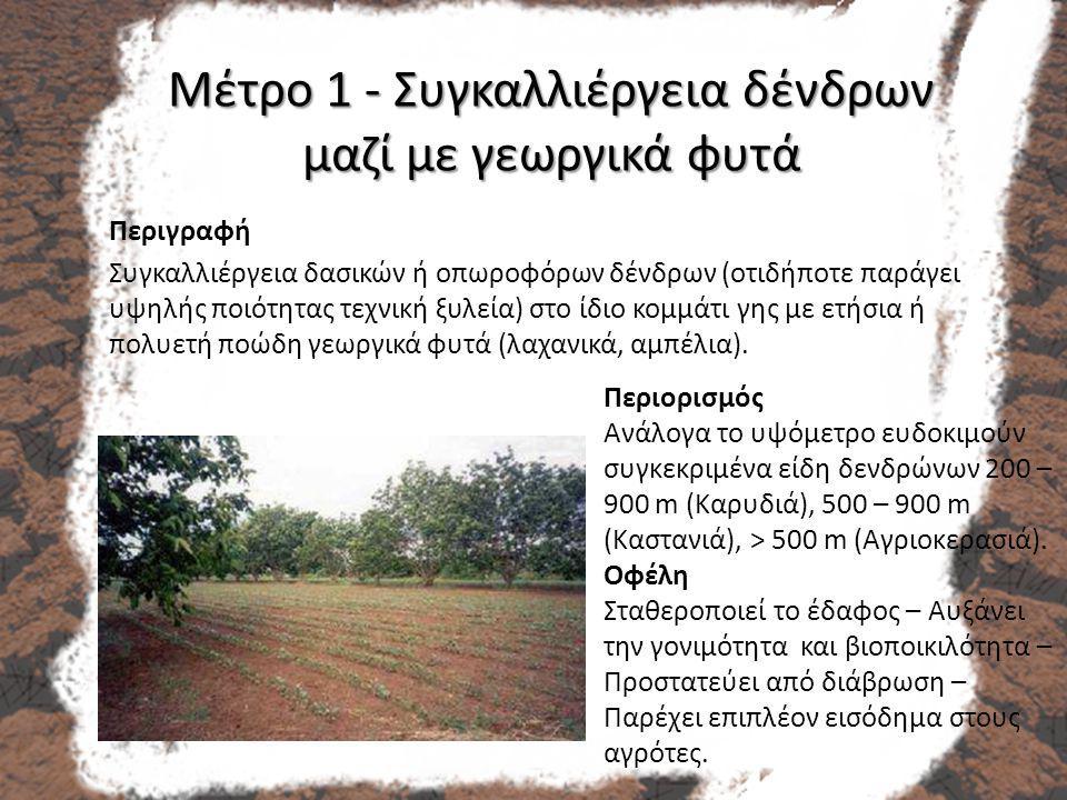 Μέτρο 1 - Συγκαλλιέργεια δένδρων μαζί με γεωργικά φυτά Περιγραφή Συγκαλλιέργεια δασικών ή οπωροφόρων δένδρων (οτιδήποτε παράγει υψηλής ποιότητας τεχνική ξυλεία) στο ίδιο κομμάτι γης με ετήσια ή πολυετή ποώδη γεωργικά φυτά (λαχανικά, αμπέλια).