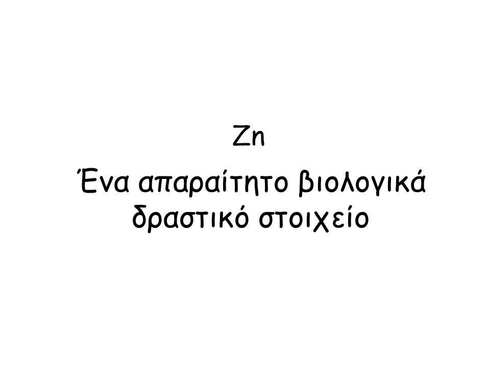 Zn Ένα απαραίτητο βιολογικά δραστικό στοιχείο
