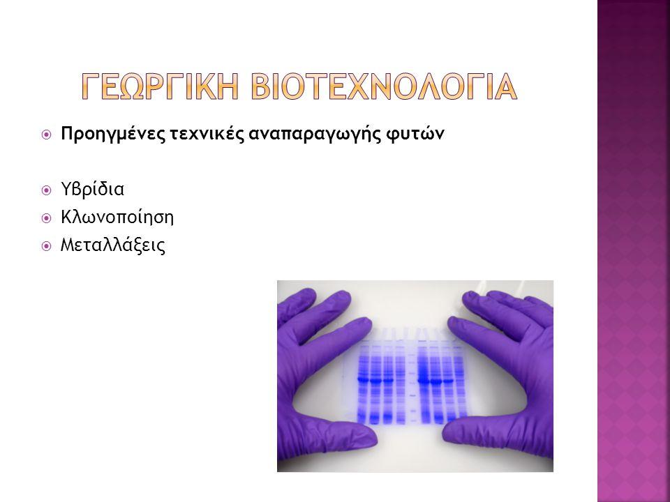  Προηγμένες τεχνικές αναπαραγωγής φυτών  Υβρίδια  Κλωνοποίηση  Μεταλλάξεις