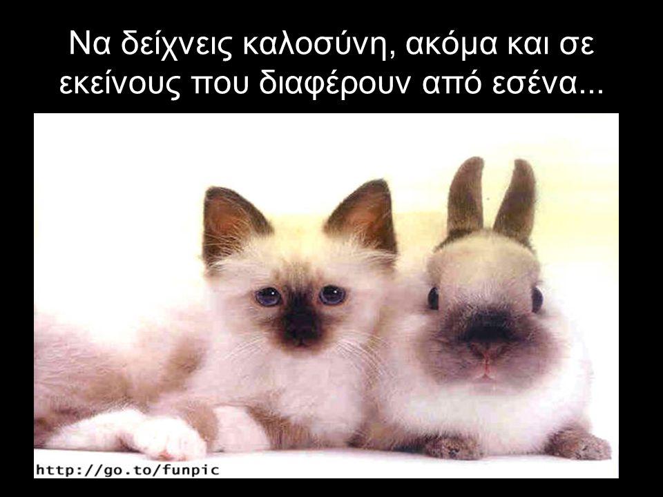 Να δείχνεις καλοσύνη, ακόμα και σε εκείνους που διαφέρουν από εσένα...