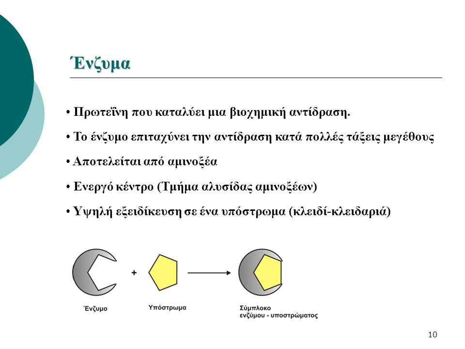 10 Ένζυμα Πρωτεΐνη που καταλύει μια βιοχημική αντίδραση. Το ένζυμο επιταχύνει την αντίδραση κατά πολλές τάξεις μεγέθους Αποτελείται από αμινοξέα Ενεργ