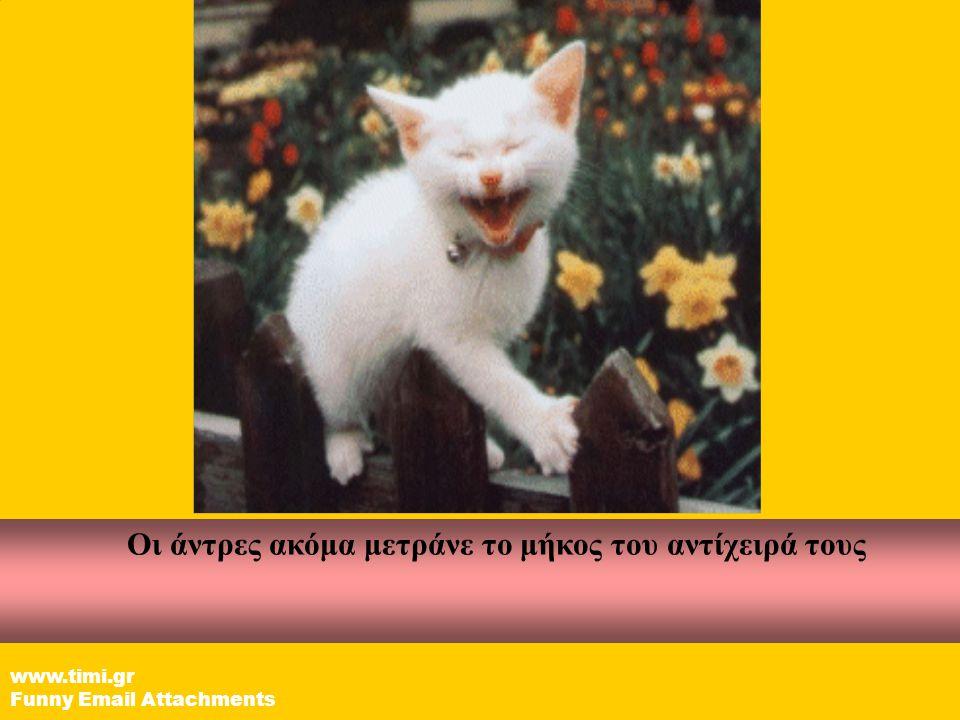 Οι γυναίκες έχουν ήδη τελειώσει το διάβασμα αυτού του Email. www.timi.gr Funny Email Attachments