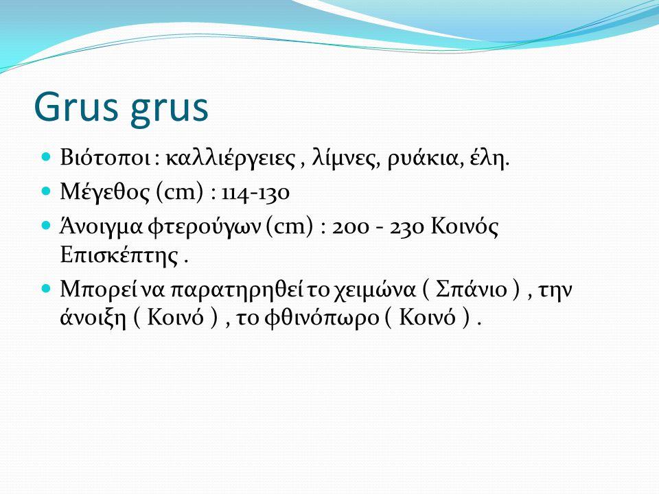 Grus grus Βιότοποι : καλλιέργειες, λίμνες, ρυάκια, έλη.