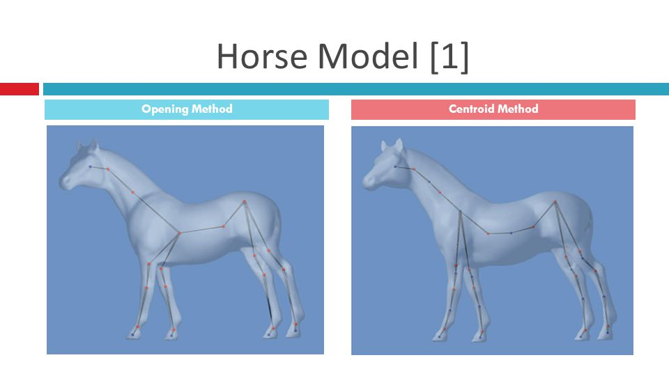 Horse Model [1] Opening MethodCentroid Method