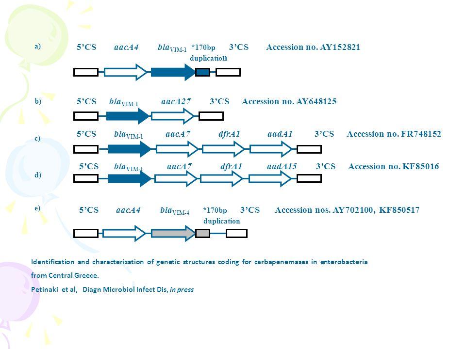 5'CS aacA4 bla VIM-1 *170bp 3'CS Accession no.