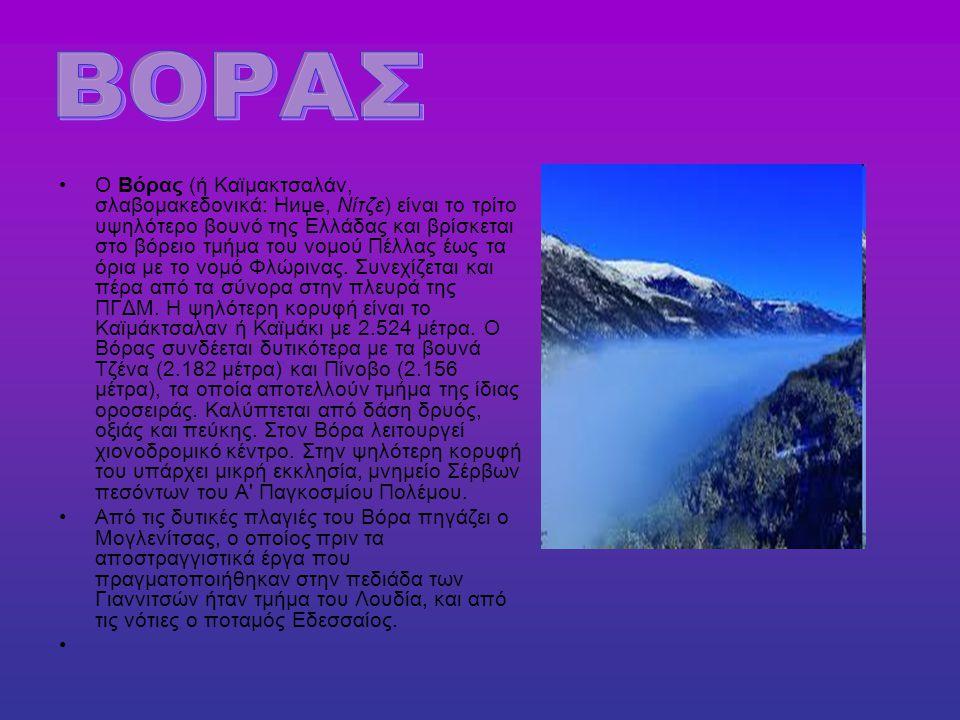 Ο Βόρας (ή Καϊμακτσαλάν, σλαβομακεδονικά: Ниџе, Νίτζε) είναι το τρίτο υψηλότερο βουνό της Ελλάδας και βρίσκεται στο βόρειο τμήμα του νομού Πέλλας έως