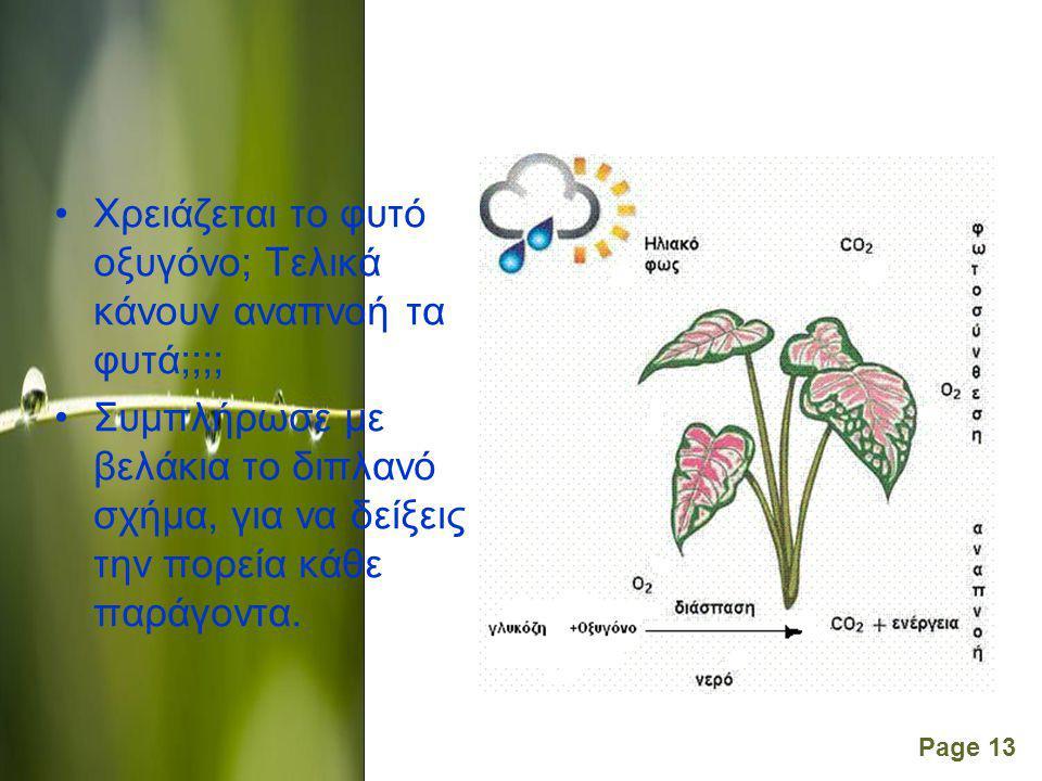 Page 13 Χρειάζεται το φυτό οξυγόνο; Τελικά κάνουν αναπνοή τα φυτά;;;; Συμπλήρωσε με βελάκια το διπλανό σχήμα, για να δείξεις την πορεία κάθε παράγοντα