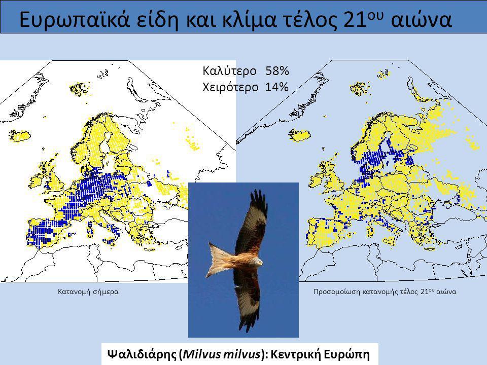 Ευρωπαϊκά είδη και κλίμα τέλος 21 ου αιώνα Καλύτερο 58% Χειρότερο 14% Ψαλιδιάρης (Milvus milvus): Κεντρική Ευρώπη Κατανομή σήμερα Προσομοίωση κατανομή