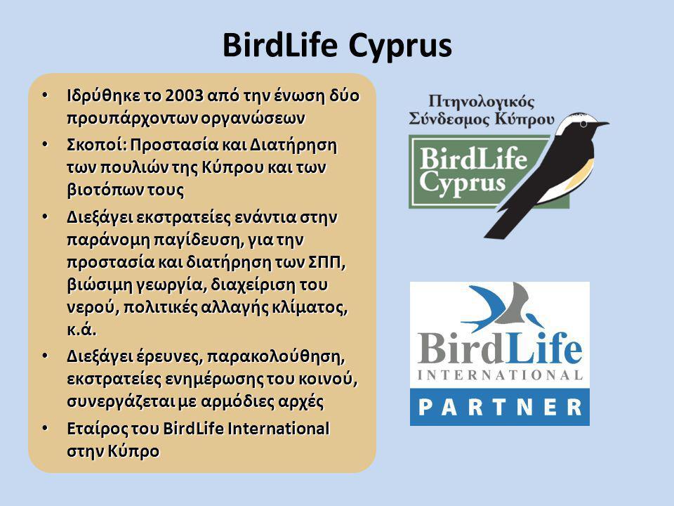 BirdLife Cyprus Ιδρύθηκε το 2003 από την ένωση δύο προυπάρχοντων οργανώσεων Ιδρύθηκε το 2003 από την ένωση δύο προυπάρχοντων οργανώσεων Σκοποί: Προστα