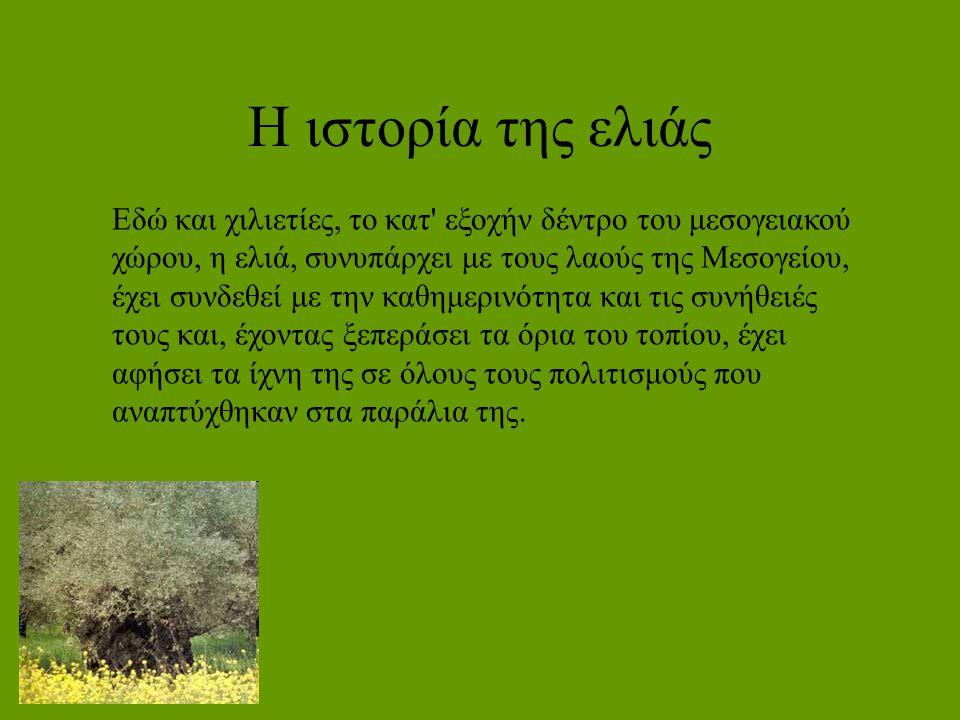 Η ιστορία της ελιάς Εδώ και χιλιετίες, το κατ' εξοχήν δέντρο του μεσογειακού χώρου, η ελιά, συνυπάρχει με τους λαούς της Μεσογείου, έχει συνδεθεί με τ