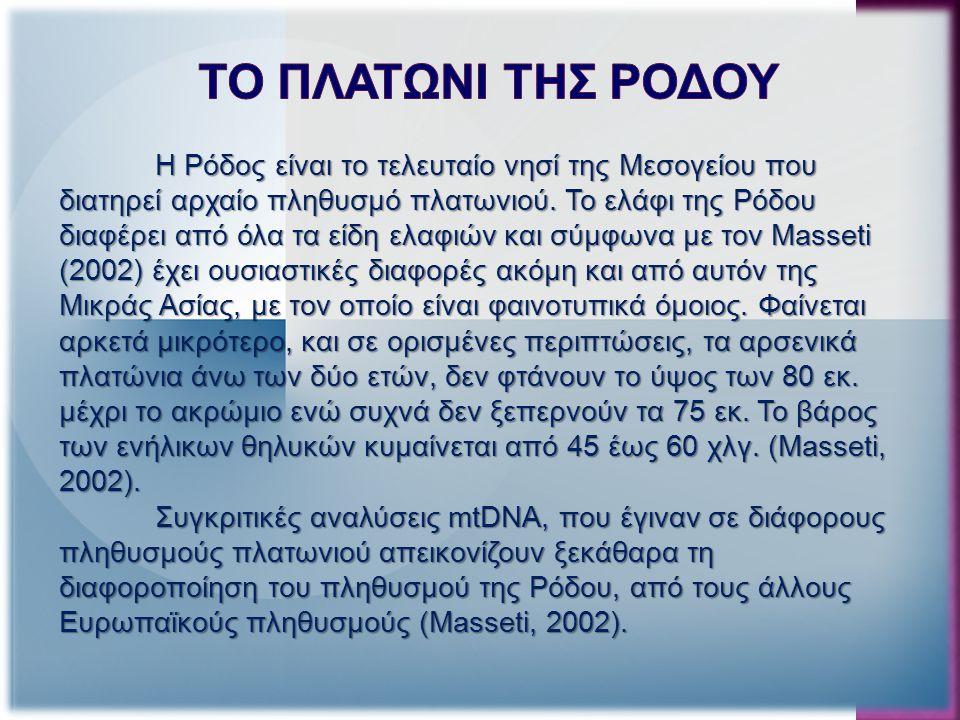 Η Ρόδος είναι το τελευταίο νησί της Μεσογείου που διατηρεί αρχαίο πληθυσμό πλατωνιού.