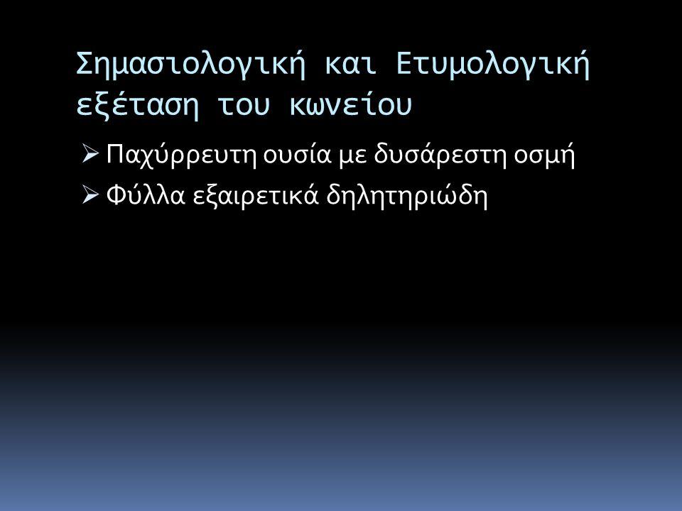 Επιφανή Πρόσωπα Που Θανατώθηκαν Στην Αρχαιότητα Με Κώνειο Θηραμένης  Αθηναίος πολιτικός